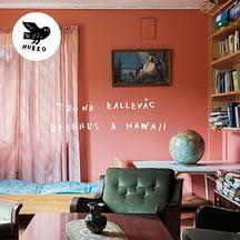 Trond Kallevåg Bedehus & Hawaii