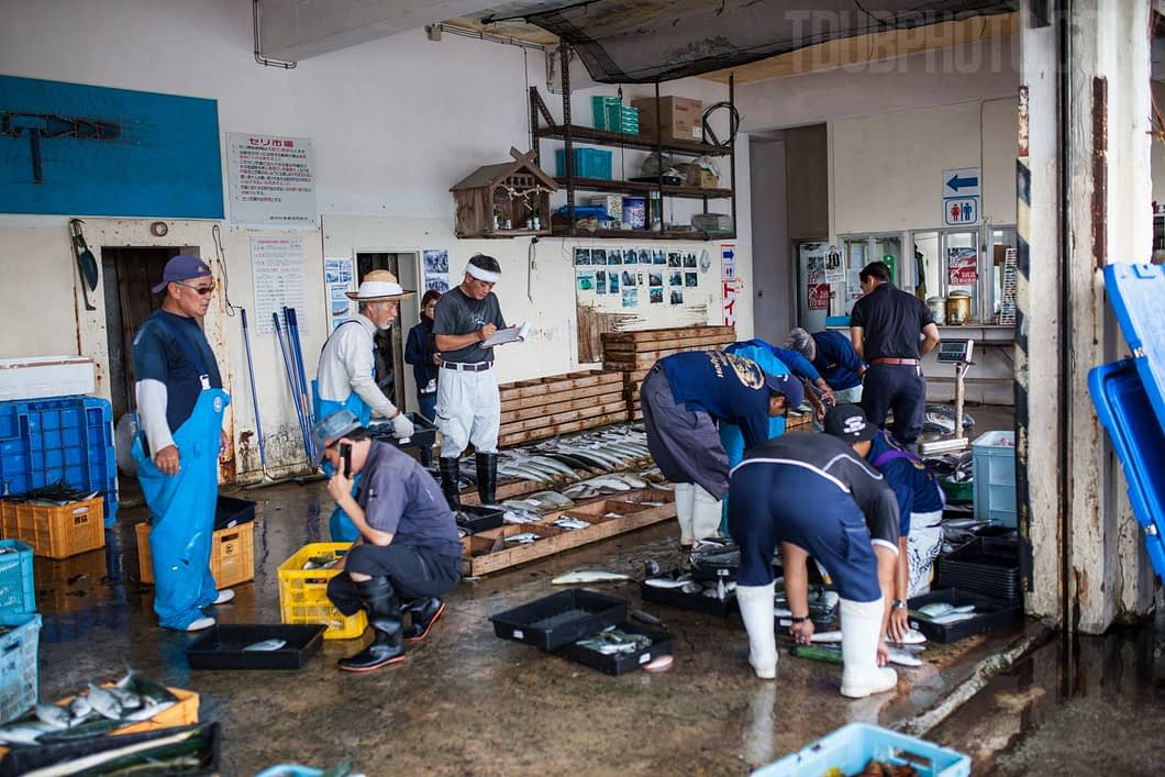 Fish are weighed and phone calls are made preceding the main fish auction of the mornings catch.