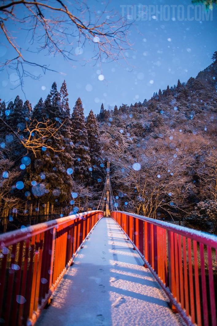 tdubphoto.com