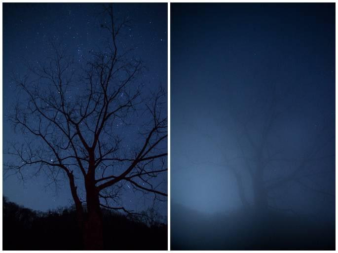 lens-fog