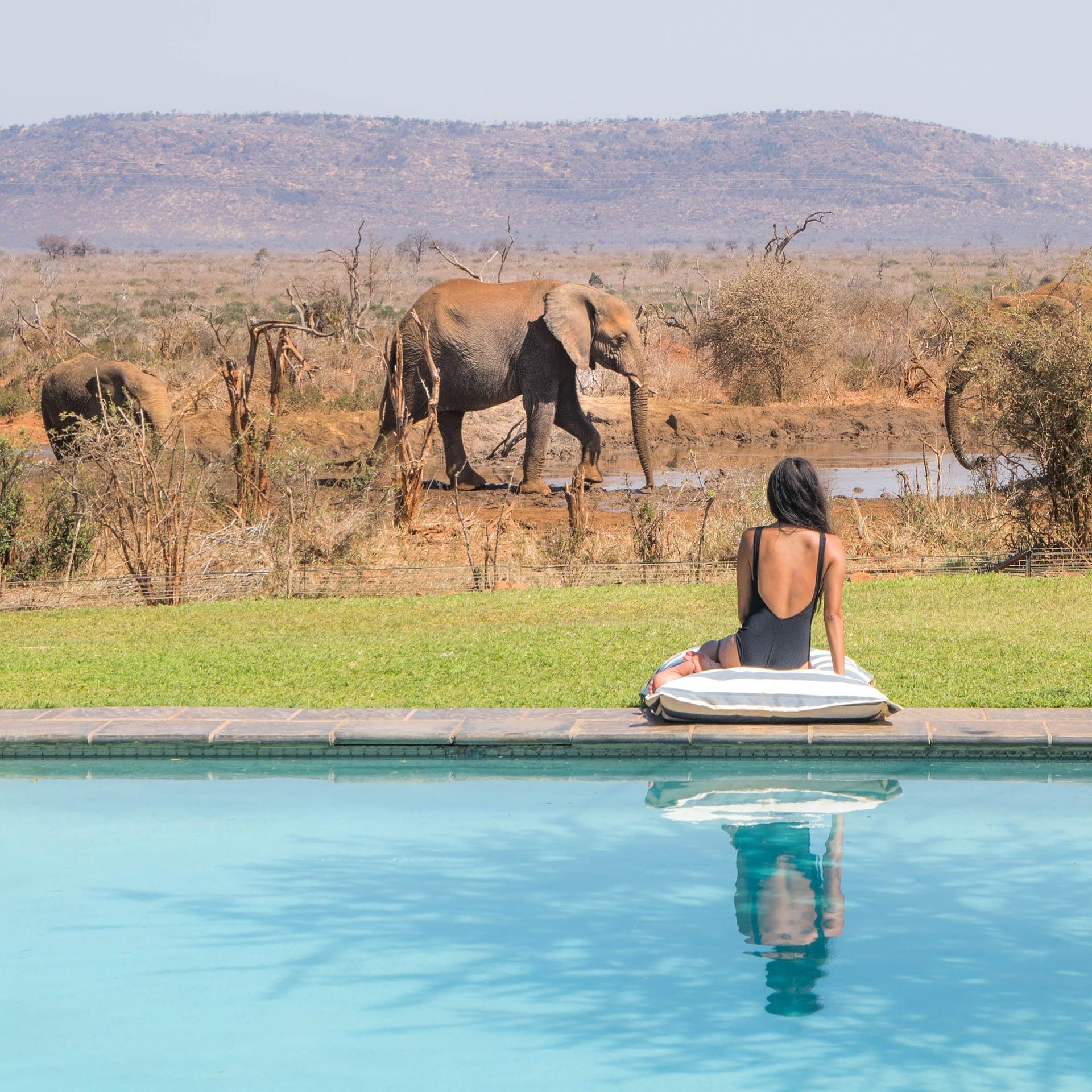 サウスアフリカ観光局